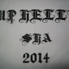 Up Helly Aa 2014